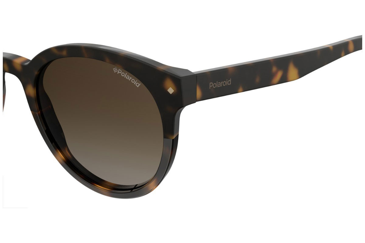 Polaroid PLD6043/S 086/LA Polarized. Frame color: Havana, Lens color: Brown, Frame shape: Round