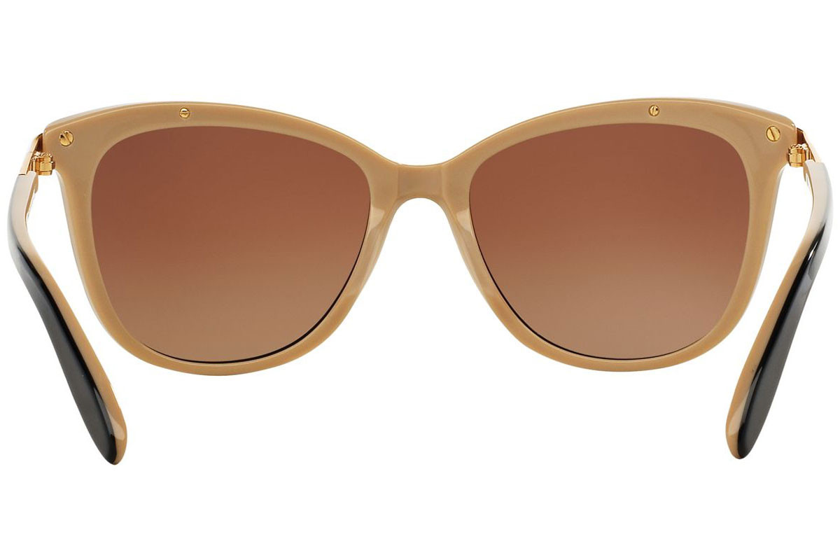 Ralph by Ralph Lauren RA5203 1090T5 Polarized. Frame color: Crni, Lens color: Smeđi, Frame shape: Cat Eye